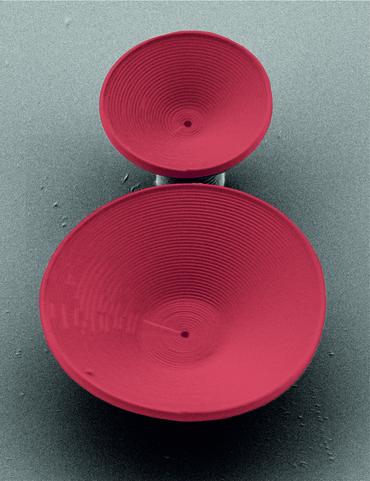 Kelchförmige, optische Resonatoren von wenigen Mikrometern Höhe könnten die Basis von photonischen Bauteilen sein.  (Bild: Siegle/KIT)
